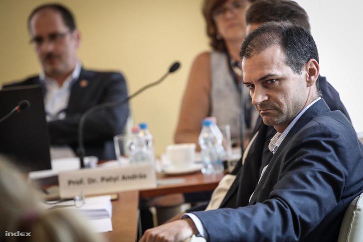 Rádi Pétert az NVB elnökké választotta Patyi lemondását követően