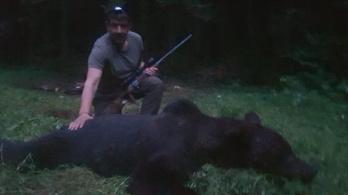 Kilőtték azt a medvét, amelyik kirámolta a gyermekotthon hűtőszekrényét