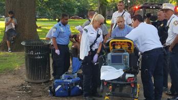 30 ember esett össze herbálozás után a Yale elitegyetem kampuszánál