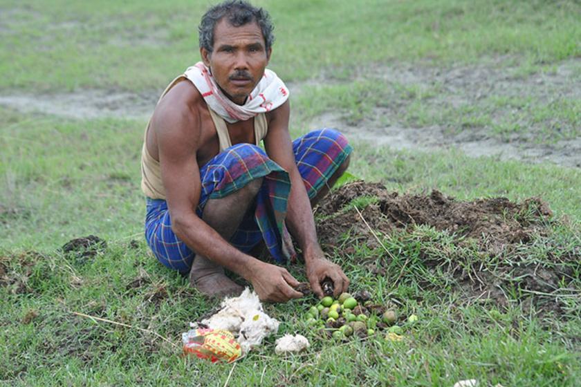 Payeng 16 éves volt, amikor kígyótetemeket talált a part menti homokpadon, akiket a sivárság elpusztított. A férfi ekkor döbbent rá, hogy a sziget nemsokára teljesen elpusztul, ezért elültetett húsz bambuszcsemetét a part mentén.