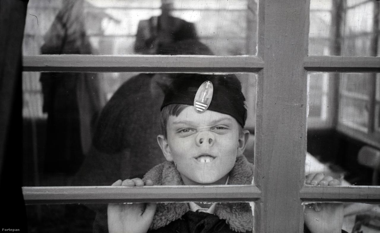 Az 1910-ben született Miklós Lajos egészen fiatalon kezdett fotózni. A szakmát sosem tanulta, autodidakta módon saját magát képezte, és egész életében Agfa Karat fényképezőgéppel dolgozott. A háború előtt és közben jóformán mindig ott volt a kezében a gép, a hadifogság alatt egyáltalán nem, utána pedig szinte már alig nyúlt hozzá.1937-ben nősült meg, egy évre rá kitört a második világháború, szinte azonnal besorozták. A hivatalosan bognármester és édesapja kocsigyárában dolgozó férfi hosszú évekig katonaként szolgált az ukrán fronton, lányát tíz éves koráig alig látta.