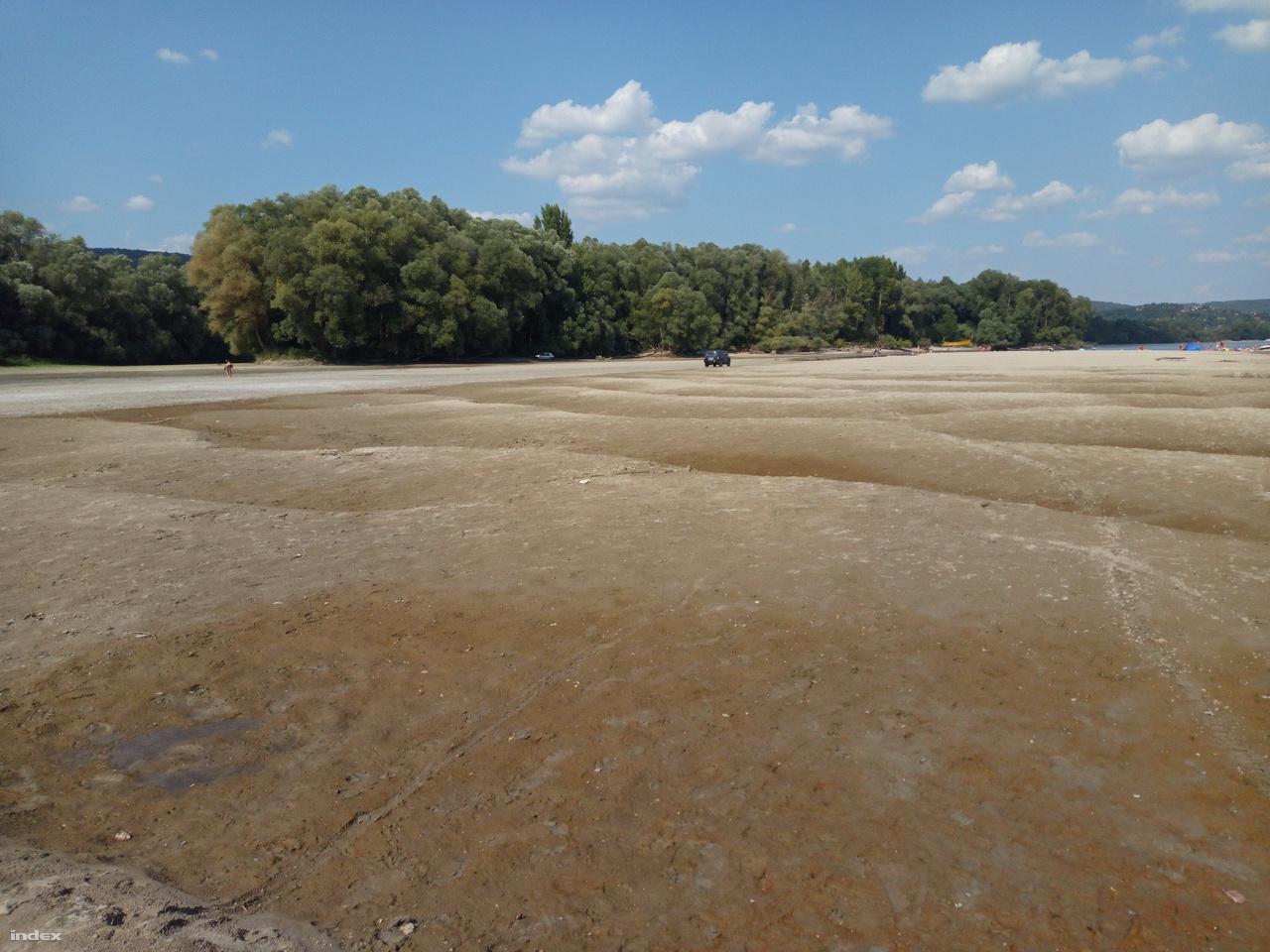 A Kismaros és Nagymaros közti homokszigetnél így festett a kiszáradt Dunaág augusztus 10-én