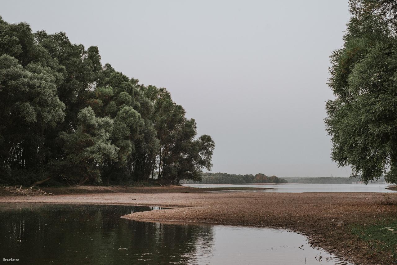 A kép a Hárosi Dunánál készült, ahol 2-3 héttel ezelőtt a képeken látható homokos részen még végig víz volt, most átlehet sétálni egy kis szigetre