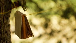 Így éleszd újra az elázott papírt, újságot vagy könyvet!