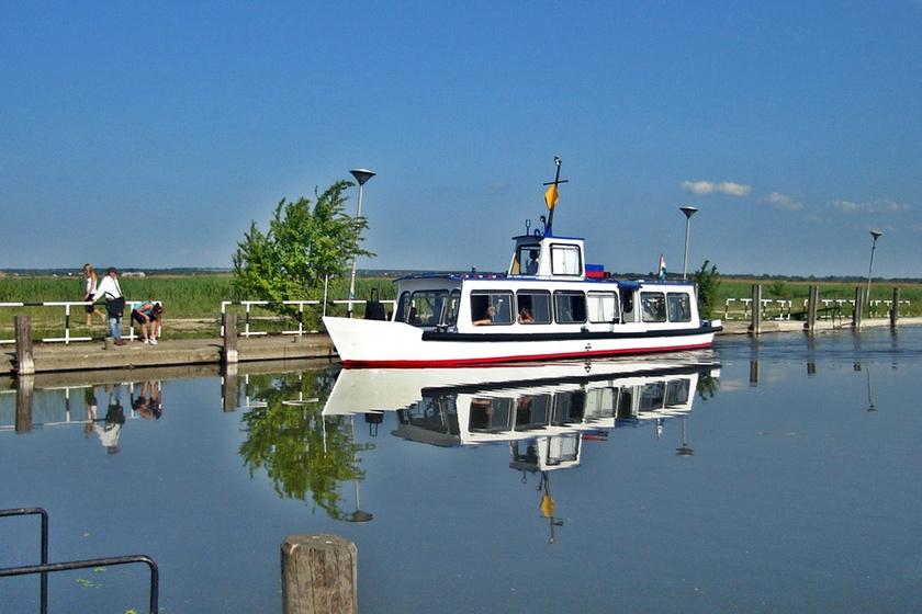 A Velencei-tavon érdemes hajóra szállni: a gazdag élővilágot a vízről csodálhatjátok meg a legjobban. Több útvonal közül a Szúnyog-szigetet bemutató, 30 perces hajóút ára 800 forint felnőtteknek, 4-18 év között és nyugdíjasoknak 600. A kerékpárjegy 250 forint, a hajó Pákozd (Szúnyog-sziget) hajóállomásról indul.