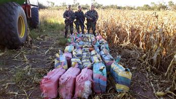 Elégettek közel 400 kiló kokaint, amit az orosz nagykövetségen találtak Argentinában