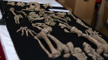 Ősi civilizáció ismeretlen sírjait tárták föl Peruban