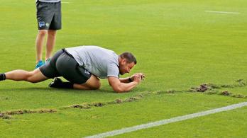 Dárdai nyomoz, ki tette tönkre a Hertha-pályát?
