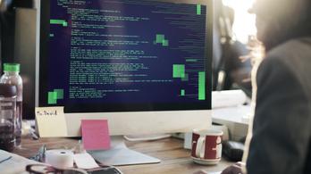 Egyre több fiatal szülő képzi át magát programozóvá