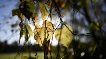 Vasárnap beköszönt az ősz az ország egyik felén