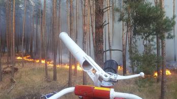 Erdőtűz pusztít Berlin közelében, három települést kiürítettek