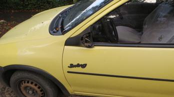 Felmosónyéllel csapkodta az autókat, aztán egy kukába verte a fejét