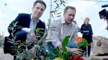 Betonba ültetett virágot az LMP