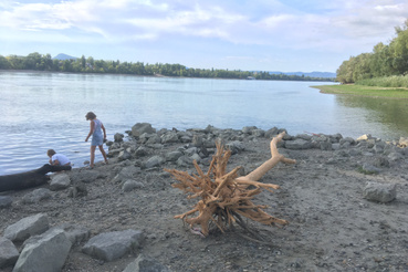 Filip műhely arra lett figyelmes, hogy a belváros területén a szárazság miatt rengeteg nagy méretű fa került a parta a Duna mentén. Mi történik ezekkel a fákkal? Mit lehetne ezzel csinálni? Hova sodorja a víz?