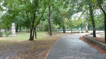 Az önkormányzat kipucolta az elhanyagolt parkot a momentumos képviselő előtt