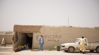Bekúszik az agyadba és lázassá tesz a sivatagi magyar film