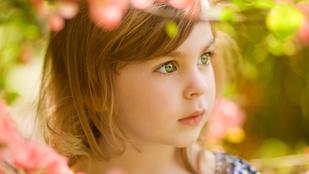 Orchidea gyerekek – lehet, hogy a tiéd is az?