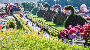 Csodáld meg a világ legszebb kertjeit! Galéria!