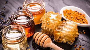 Máig sem egyértelmű, vegán étel-e a méz