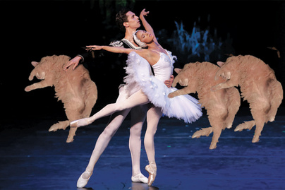 macska-balett