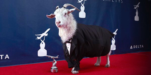 Delta Goat