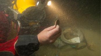Rengeteg kincset rejt az óceánok mélye