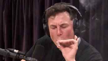 Csúnyán beszivatták élő adásban Elon Muskot