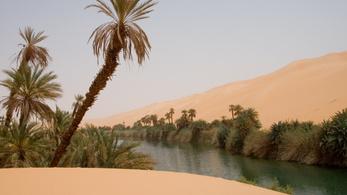 Napelemek vihetnek esőt a Szaharába