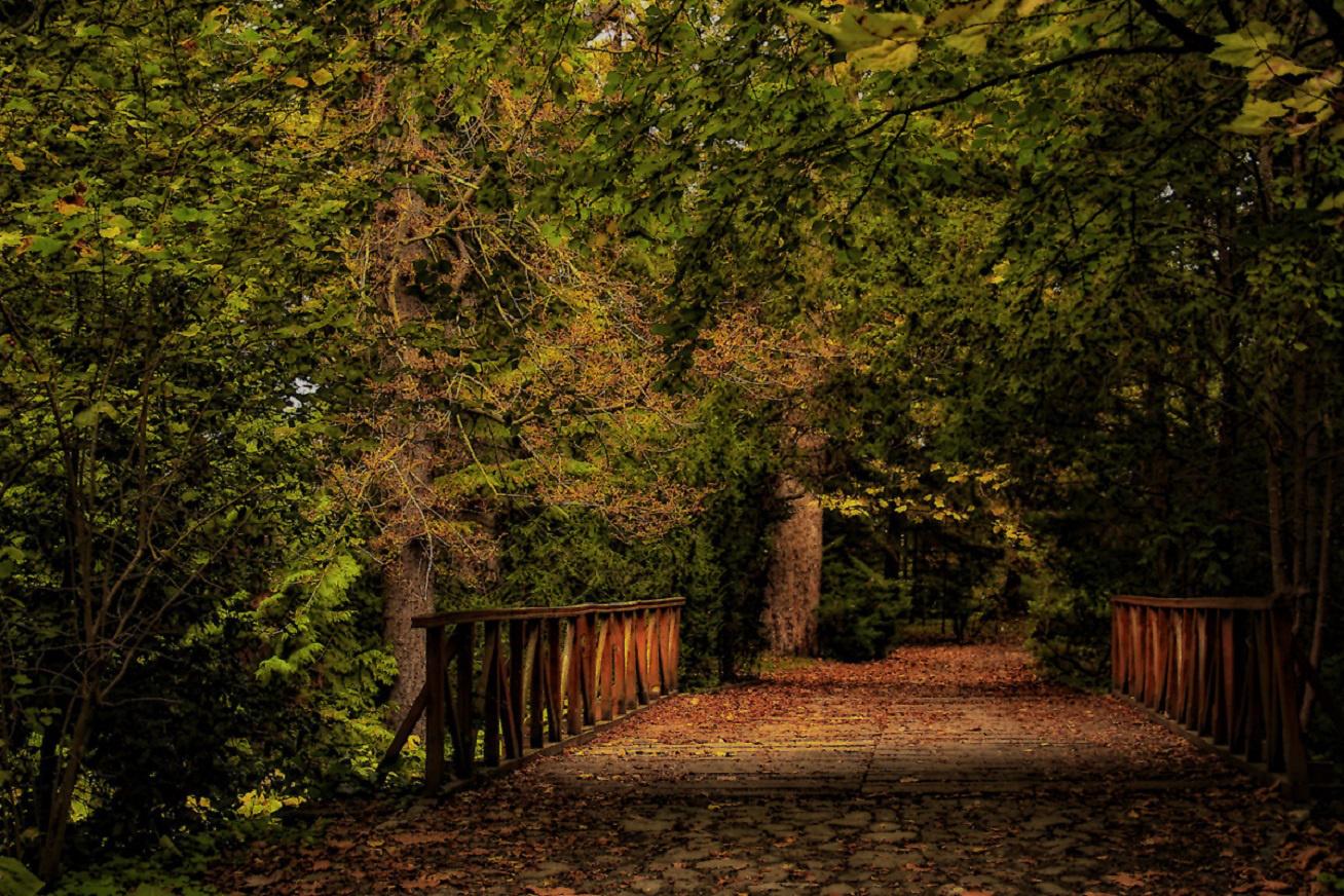 vacratot-hid arboretum