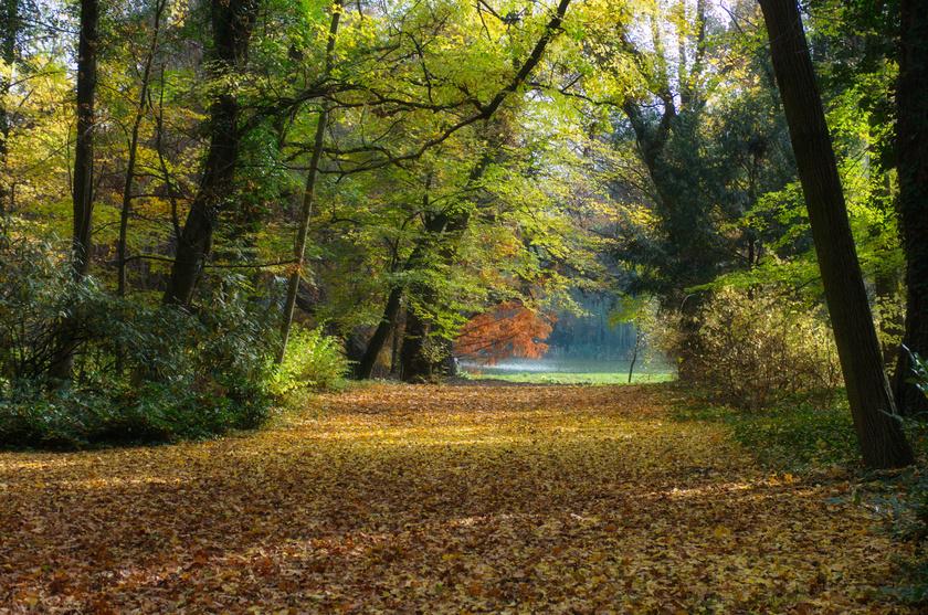 vacratot-arboretum