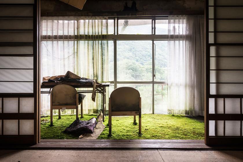 Ezt az elhagyatott hotelt a természet már birtokba vette.