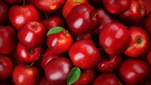 Őrizd meg az alma frissességét télre is! Mutatjuk, hogyan