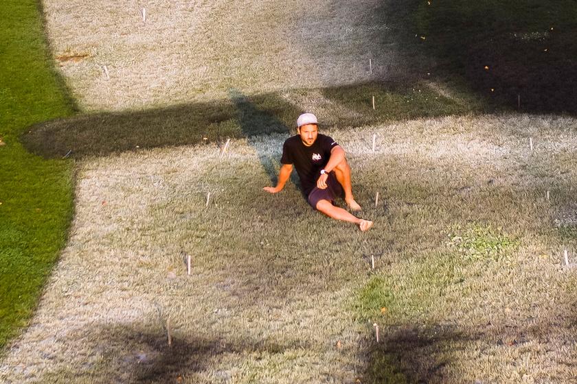 Átfestette a gyepet a tóparton a férfi: gyönyörű kép rajzolódik ki belőle