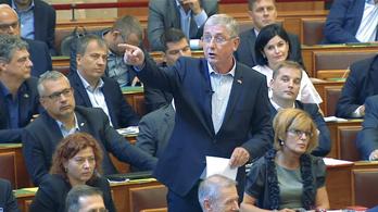Gyurcsány: Talán az én anyám tehet a Sargentini-jelentésről?