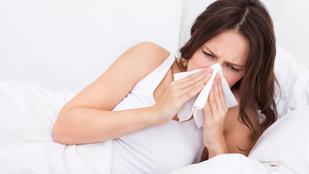 Allergiás vagy? Így bánj el a poratkákkal!
