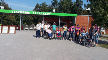 Nem kaptak kedvezményt a fogyatékossággal élők a Veszprémi Állatkertben