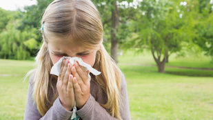 Orvos mondja el, mit tehetsz a gyermekkori allergia ellen