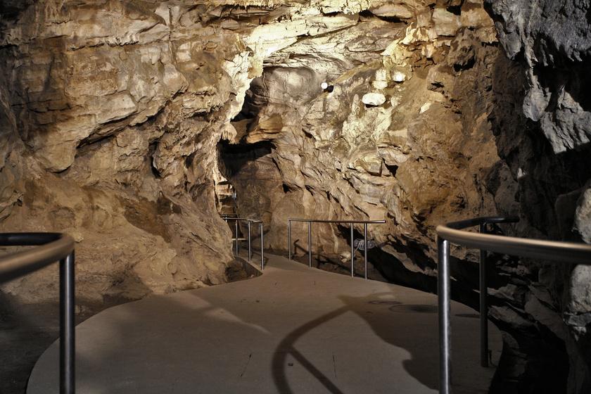 Az Abaligeti-barlang a mecseki Bodó-hegy oldalában található, fokozottan védett természeti érték. A hely vonattal Pécs vagy Dombóvár felől közelíthető meg, 466 méteres főága szakvezetéssel látogatható, a belépő 1200 forint, diákoknak, nyugdíjasoknak 1000.
