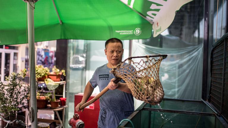 Eldugott kincsek a budapesti Chinatownban
