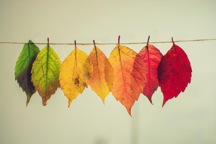 Lehűléssel érkezik meg az ősz a hétvégén - Időjárás-előrejelzés