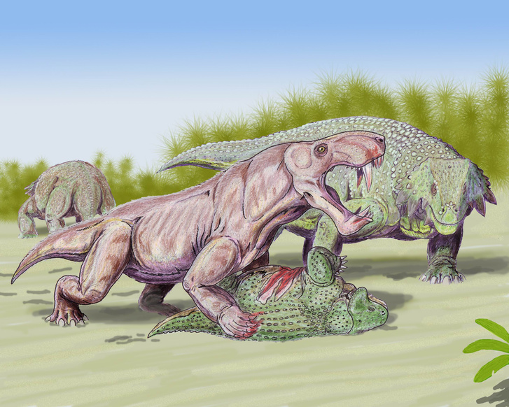 Így nézhettek ki a fejlettebb késő perm-kori őslények (Inostrancevia alexandri és Scutosaurus karpinski)