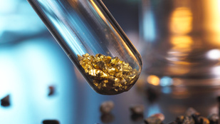 Arannyal tölti napjait a szegedi kutatónő