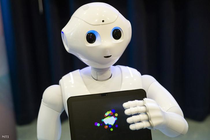 A Netlife Robotics vállalat Pepper nevû humanoid robotjának bemutatója az Ipar 4.0 Technológiai Központban a Budapesti Mûszaki és Gazdaságtudományi Egyetemen 2018. szeptember 6-án.