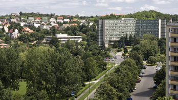 Ajkai kórház: az állam szerint túl sok pénzt kértek az orvosok