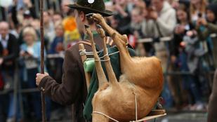 Az állatvédőknek ezek után biztos nem az Oktoberfest lesz a kedvenc fesztiválja