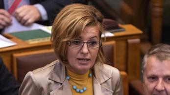Parlamenti vitában elhangzott a szopófantom kifejezés