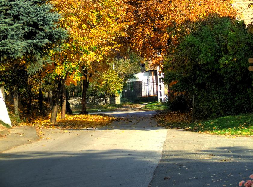 Zengővárkony kedves utcái őszi pompában igazán hangulatosak. A faluban egy percig nem lehet unatkozni, annyi a látnivaló.