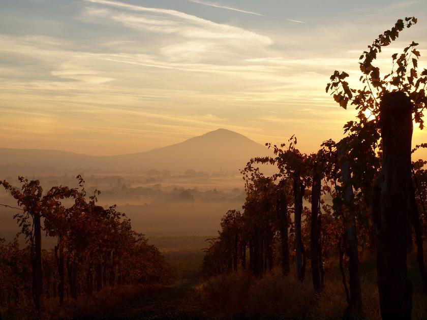 Szársomlyó az ország legdélebbi hegye. Szigethegy, a Villányi-hegységtől külön, magányosan áll, nem messze a horvát határtól.