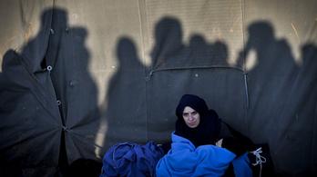 Idén 352 embernek adtunk menedéket