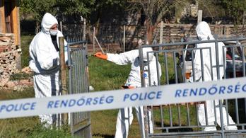 Anya és kétéves gyereke holttestét találták meg Várpalotán